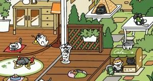 มาเล่นเกมเลี้ยงแมว Neko Atsume กันเถอะ - ตอน 2