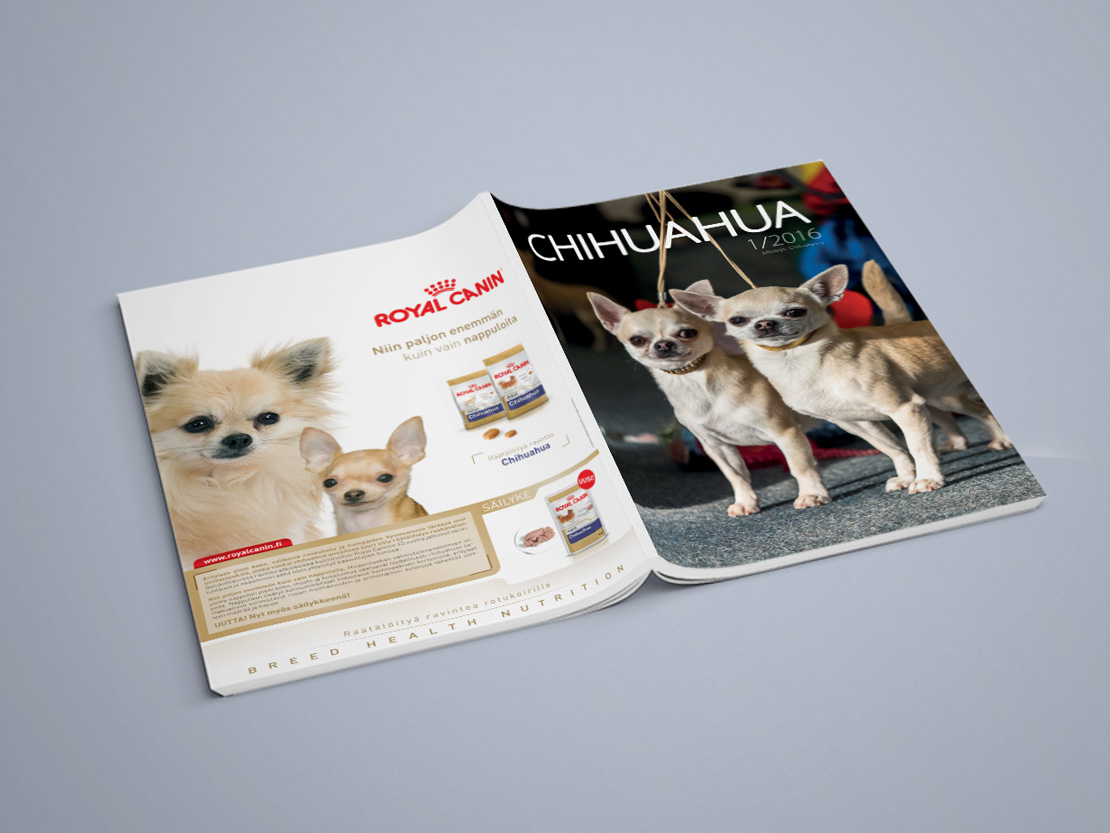 Chihuahua Magazine Year of Clean Water
