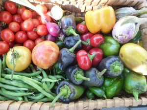 Todays Harvest Basket Sept 18, 2012