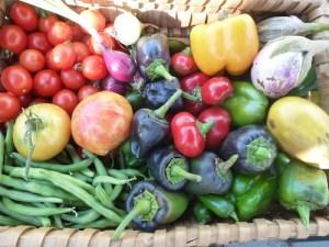 Todays Harvest Basket Sept 18, 2012