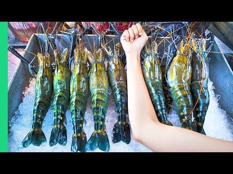 RECORD BREAKING THAI PRAWNS!!! The ULTIMATE Thai Seafood Abilities in Bangkok, Thailand!