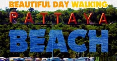Sleek Day Walking Pattaya Beach Thailand