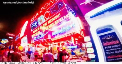 PATTAYA WALKING STREET l PATTAYA NIGHTLIFE l RED LIGHT AREA THAILAND l TRAVEL VLOG 1