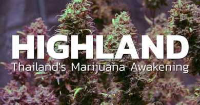 Thailand legalizing Marijuana | HIGHLAND trailer |  Coconuts TV on Netflix