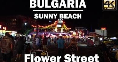 A Scurry Around Flower Street at Night in Sunny Sea scuttle Bulgaria [4K]