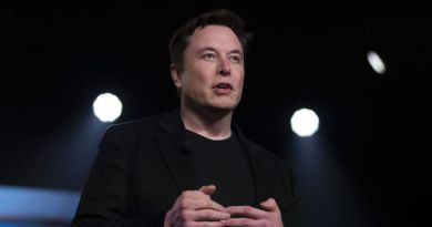 Pattaya Elon Musk Blunders by Hiring Convicted Fraudster to Investigate British Diver Amid Defamation Suit