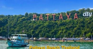 Thailand Pattaya Metropolis Video | Pattaya Seaside in Thailand 2020