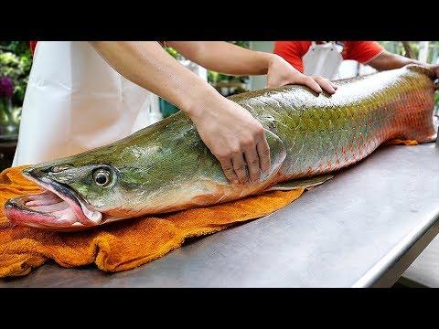 Thai Food – GIANT RIVER MONSTER Amazon Fish Ceviche Bangkok Seafood Thailand