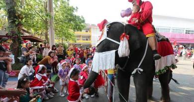 Viral video: Elephants turn Santa for young people in this Thai faculty