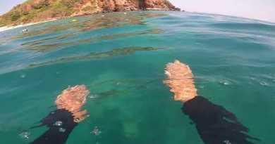 MONKEY BEACH KOH LARN PATTAYA BEACH 14