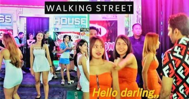 Pattaya Strolling Avenue at Night 2019 | Pink Gentle Condominium | Bars | Ladyboys | Guru Anjana
