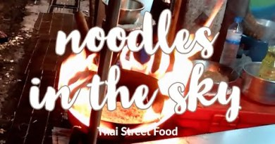 Thailand Avenue Food in Bangkok 2020 (The cook throws noodles within the sky)