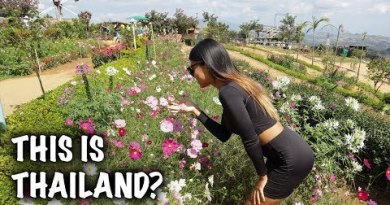 THAILAND HOLIDAYS – BEST THINGS TO DO IN KHAO KHO