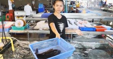Naklua Seafood Market – Pattaya, Thailand