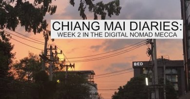 2nd Week in Chiang Mai. Muay Thai, Coworking, being a Digital Nomad. #digitalnomad #chiangmai