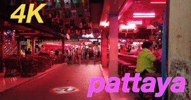 Pattaya Walking Avenue Nightlife 2020 Vlog001