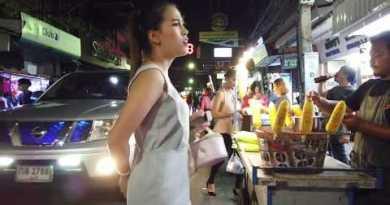 Walking Street Pattaya Scenes – Taken gentle before shut down