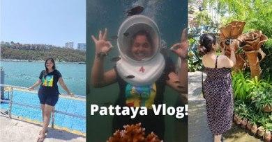 Pattaya Vlog | Coral Island, Strolling Street, Underwater Sea Stroll  | Thailand Collection Allotment 3