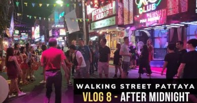 Pattaya Strolling Avenue at Night time 2019 Vlog 8