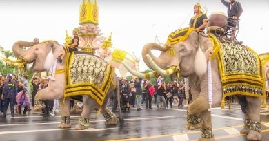Elephant Thai For  His Majesty The Late King Bhumibol Adulyadej of Thailand Beefy Hd 1080p