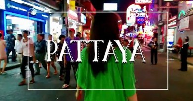 Pattaya Nightlife   Walking Avenue, Russian Event, Tuktuk, and Elephants