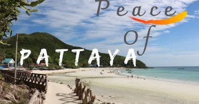 Easy methods to commute Pattaya | Thailand | outer BUZZ