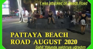 I modified into attacked by a woman :-) at Pattaya Seashore Twin carriageway Evening plod and seaside women August 2020