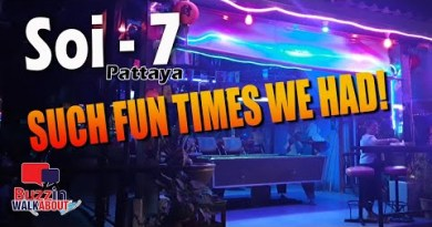Soi 7 Pattaya – 2nd Avenue. Soi 7 used to be this type of enjoyable and horny place of residing to talk over with right here in Pattaya!