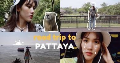 eng cc) Motorway Time out to Pattaya vlog 🌴🚗💨 / jomtien seashore, khao kheow zoo, talking animals