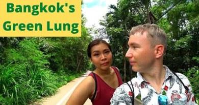 Bangkok's Green Lung – Bang Krachao Is One Of The Most reasonable Things To Impact In Bangkok