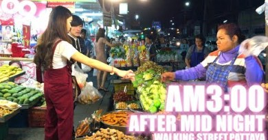 Stroll in hour of darkness Pattaya / Walking Boulevard and Market