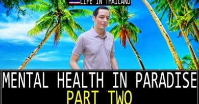 EXPAT MENTAL HEALTH IN Thailand Share 2. Alcohol, Females, Money, Social Media. A lethal aggregate.