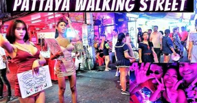 Pattaya Walking Facet twin carriageway Nightlife When Evening turned into Alive