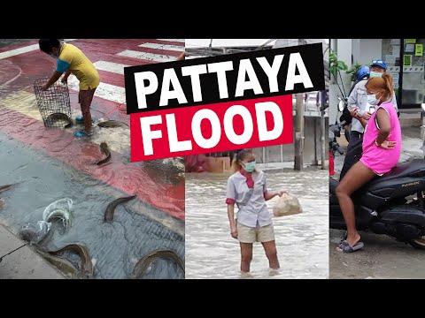 BIG FLOOD IN PATTAYA | FISH SWIM ON THE STREETS