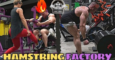 Gyms Are In the spoil Open All once more   Brutal Hamstring Exercise @ The Muscle Factory Pattaya