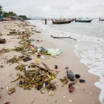 Green Peace carries out plastic garbage collection on Chonburi beach
