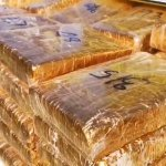 538 kg of marijuana seized in Nakhon Phanom