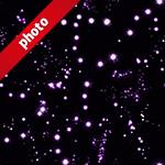 紫色のキラキラしたイルミネーションの写真加工パターン