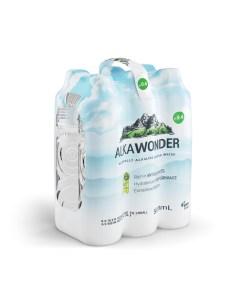 ALKAWONDER Naturally Alkaline Spring Water, 16.9 fl oz, 6ct