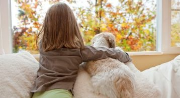 5 Reasons to Sell This Fall | Simplifying The Market