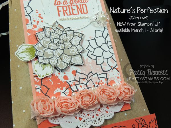 Natures-perfection-gift-bag-sale-a-bration-pattystamps-stampin-up-2