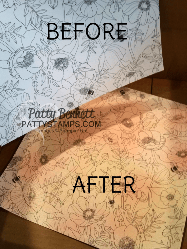 "Before and after using Stampin' Spritzers on the Stampin Up! Inside the Lines ""coloring book paper"" - free gift choice with $50 purchase in my online store through March 30, 2017, www.pattystamps.com"