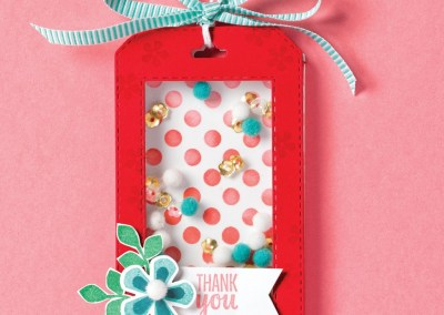 Sale-a-Bration 2020 Stampin' UP! Videos