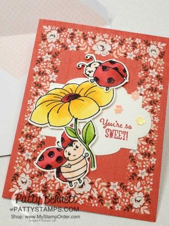 Little Ladybug stamp set & Ladybug dies