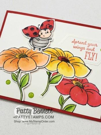 Little Ladybug Hostess Set