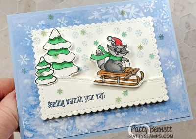Freezin Fun Snowflake Splendor Cards