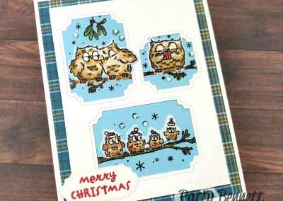 Die Cutting & Stamping Tip for Have a Hoot