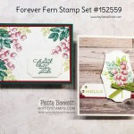 Forever Fern bundle card ideas featuring In Good Taste woodgrain paper. by Patty Bennett www.PattyStamps.com