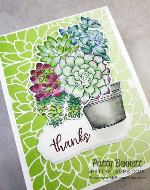 Simply Succulents stamp set with Stampin' Blends markers, with Oh So Ombre background. Card by Patty Bennett www.PattyStamps.com