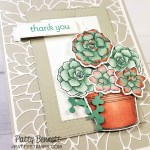 Simply Succulents stamp set image colored with Stampin